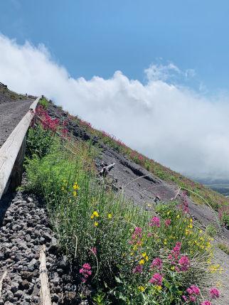 Aufstieg des Vulkans Vesuv