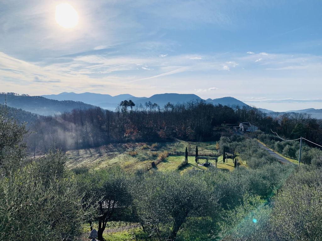 Aussicht aus der Villa Pardini