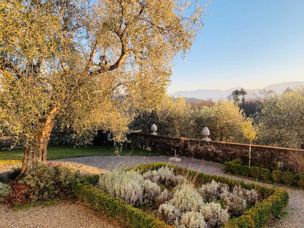 Garten der Villa Pardini