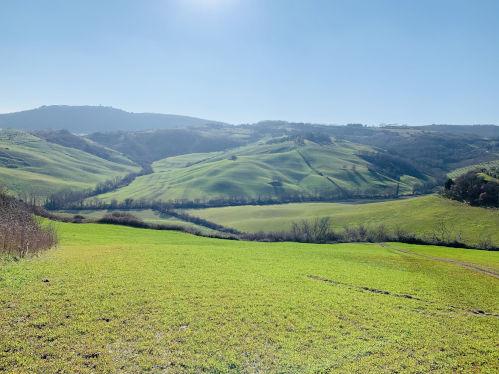 Die grüne Toskana
