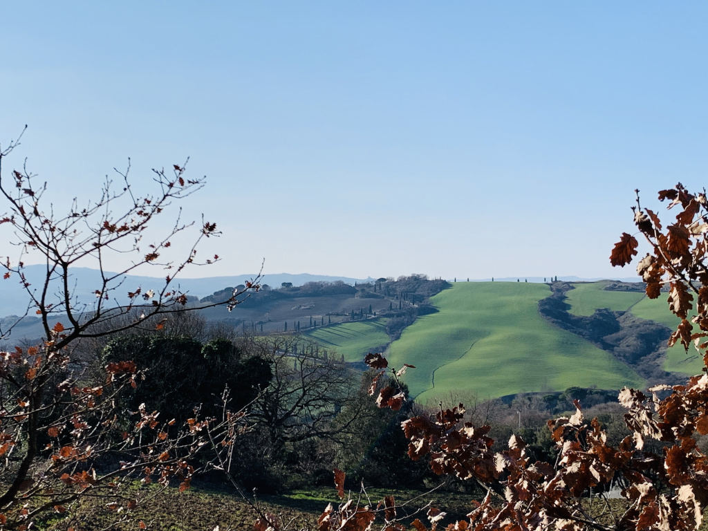 Die grünen Hügel der Toskana im Frühling