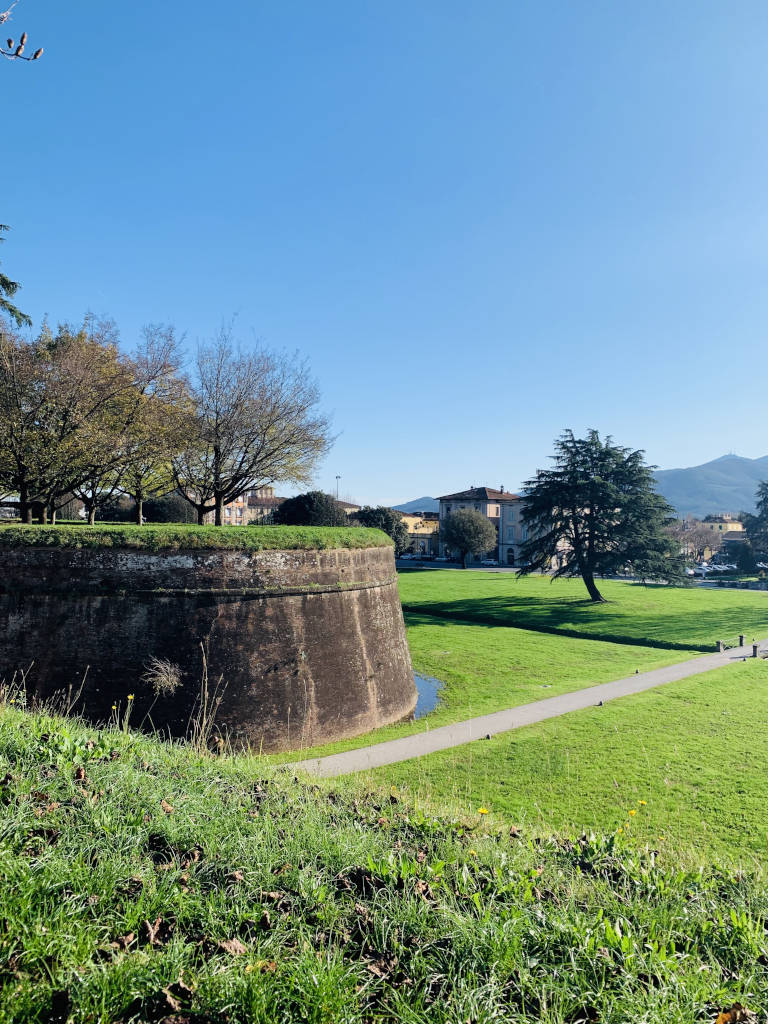 Grüner Rasen vor der Stadtmauer von Lucca