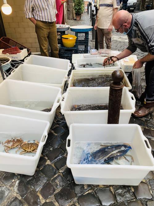 Fischstand Neapel