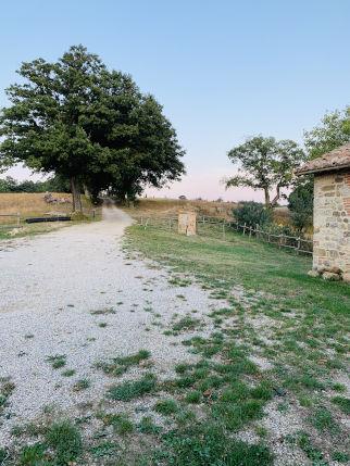 Weg zum Agriturismo IPoderi